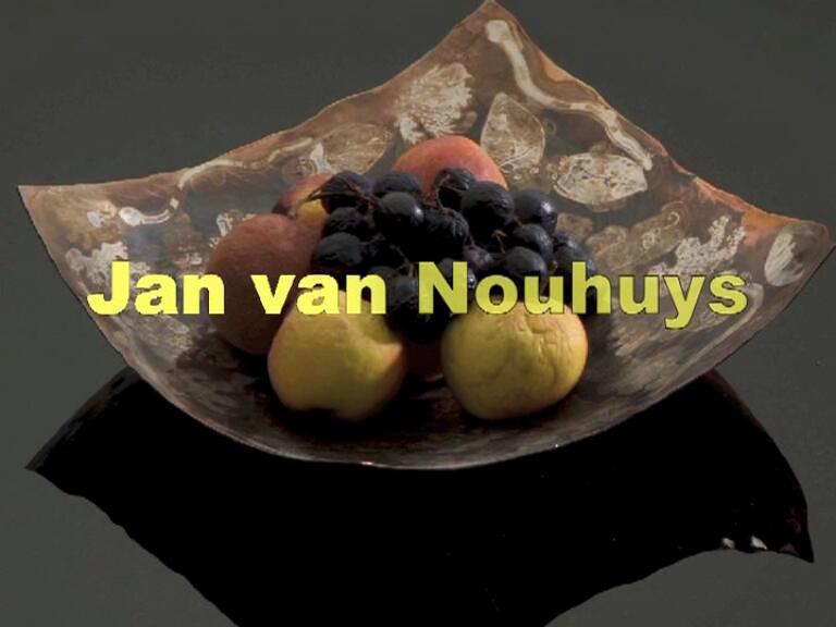 2008-1_45_Jan_van_Nouhuys